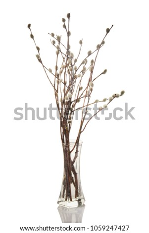 Free Photos Glass Vase With Willow Branches Avopix