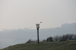 Winchelsea Beacon or fire beacon are a warning signal system of historical lit on hills in coastal areas of England Scotland to signal invading lit in medieval overlooking Brede Valley, East Sussex UK