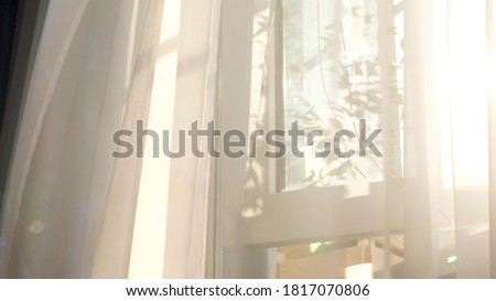 wind blows through the open window in the room. Waving white tulle near the window. Morning sun lighting the room, shadow background overlays. Foto d'archivio ©