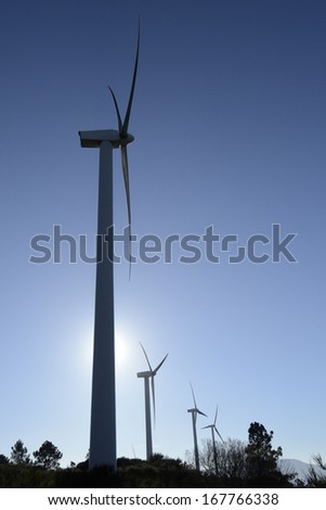 Wind energy business. Wind silhouettes with blue sky background and forest