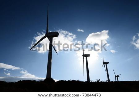 Wind farm against the light