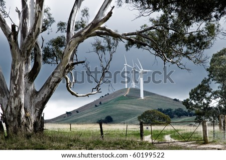 Wind farm in rural Australia