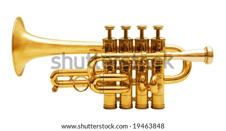 wind musical instrument isolated over white background #19463848