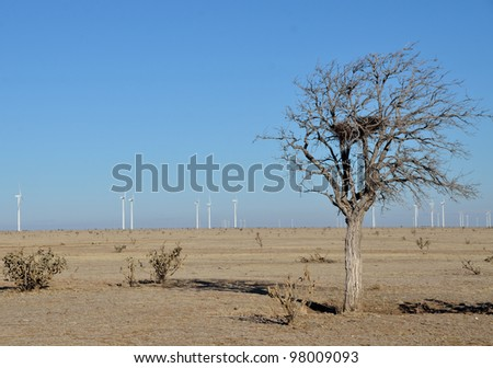Wind Power Background to Lone Tree
