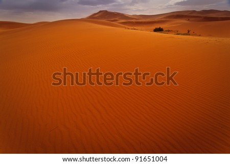 Wind rippled expanse of sand dune with glimpse of oasis in Sahara Desert Morocco