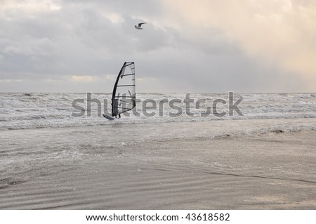 Wind Surfer, Irish Sea Bettystown, Meath, Ireland