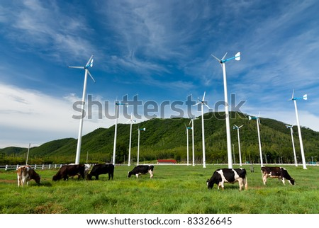 Wind turbine farm and cows