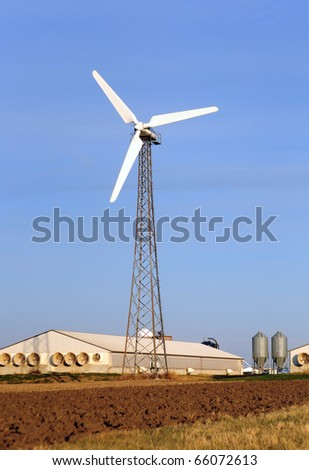 Wind turbine on a hog farm in Iowa