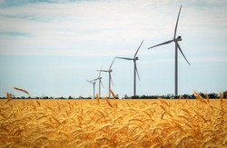 Wind turbines and agricultural field on a summer day. Energy production, clean and renewable energy.