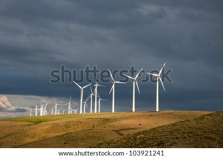 Wind turbines below a stormy sky in Washington State