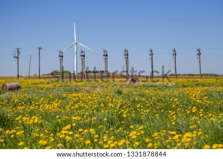 Wind turbines in a field in spring. A field of dandelions. Poles for transportation of electricity. #1331878844