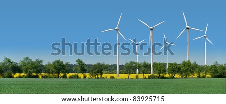 Wind turbines in a rapeseed field behind an alley