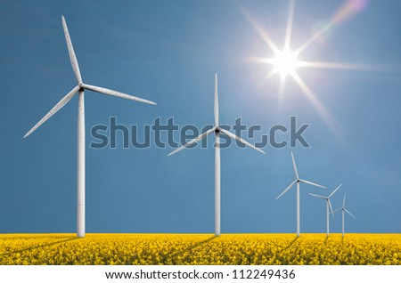 Wind turbines on a bright sunny day in a field with cole seed used for fuel production