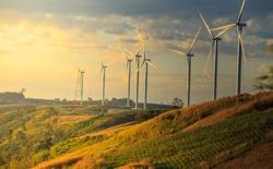 Wind turbines on sunny morning