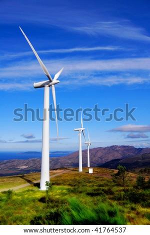 Wind Turbines on the Sea Coast.
