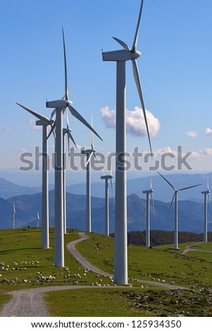 wind turbines with sheep on grass