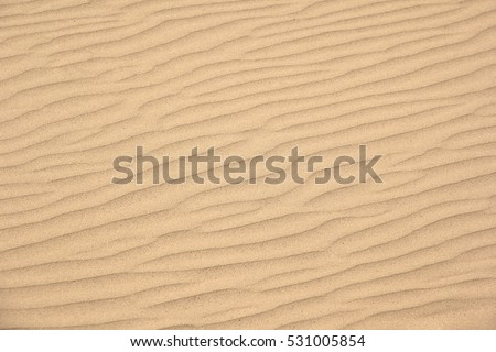 Photo of  Wind vortices in the sand.