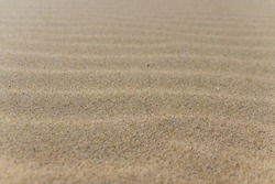 Wind waves in the sand, close up. North Sea, Cadzand-Bad, Netherlands.