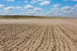 wind with dust over dried field after several days without rains