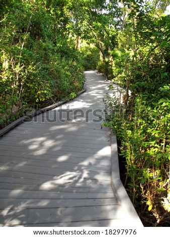 winding boardwalk Ding Darling Wildlife Refuge Florida