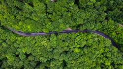 winding forest road in the mountains from above
