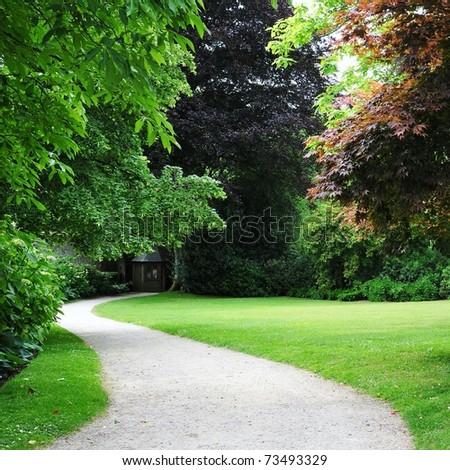 Winding Path through a Tranquil Verdant Garden