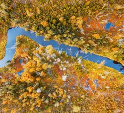 Winding river in the yellow autumn forest. Bright aerial top view.