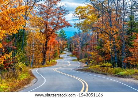 Winding Road at Autumn in Door County of Wisconsin Foto stock ©