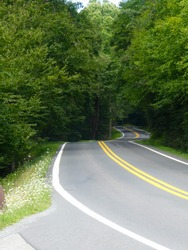 Winding road at Blackwater Falls State Park in West Virginia on a sunny day.