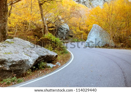 Winding road through fall foliage in Mt. Mansfield in Stowe mountain ski resort, Vermont, US