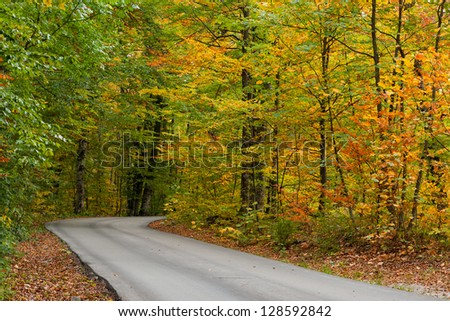Winding road trough the autumn or fall forest.
