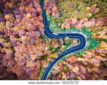 Winding road trough the forest. Hi mountain pass in Transylvania, Romania. Aerial view from a drone. #503270719