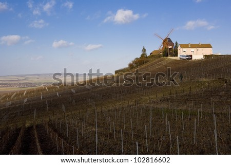 windmill and vineyard near Verzenay, Champagne Region, Burgundy, France