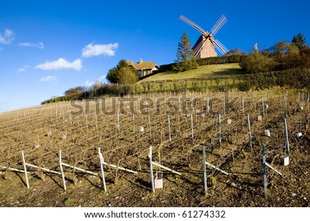 windmill and vineyard near Verzenay, Champagne Region, France