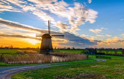 Windmill farm in Holland landscape at sunset