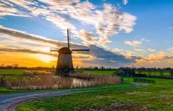 Windmill farm in Holland scenery landscape