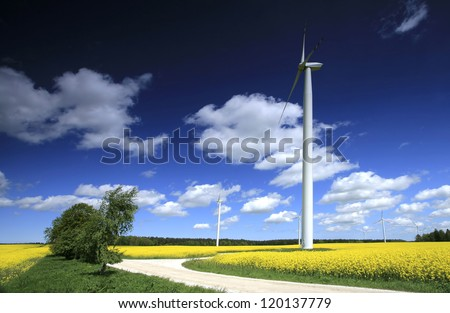 Windmill farm on the rapeseed field