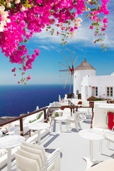 windmill of Oia with flowers at sunny day close up, Santorini