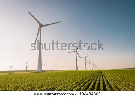 Windmill park, huge windmill generator turbines during sunset in the meadow, green technology landscape