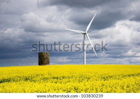 Windmill with rapeseed / Duel green energy from wind power and biofuel