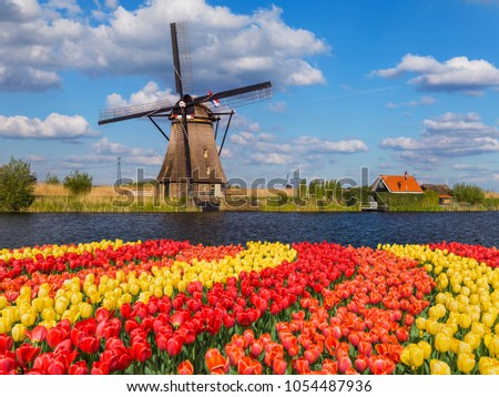 windmills and flowers in...