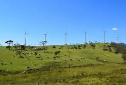 Windmills and meadows in rural Sri Lanka