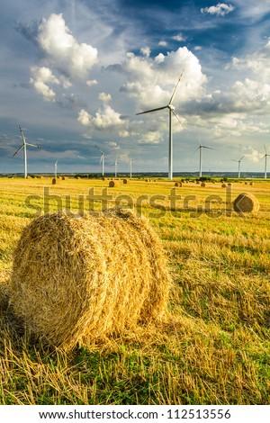 Windmills generating green energy