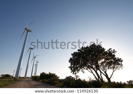 windmills lined up at dusk