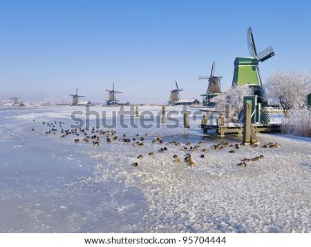 Windmills of the Zaanse Schans in winter, Holland - stock photo