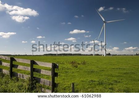 Windmills on dutch meadow