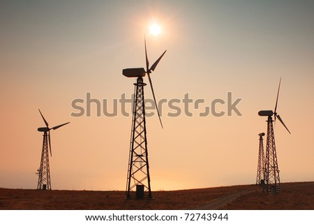 Windmills power at sunset