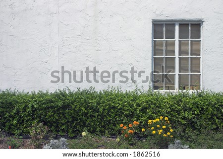 Window against white stucco wall with flowers and hedge