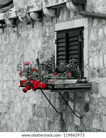 Window and bricks #119862973