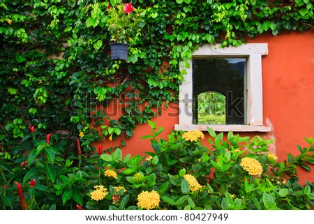 window and flower background